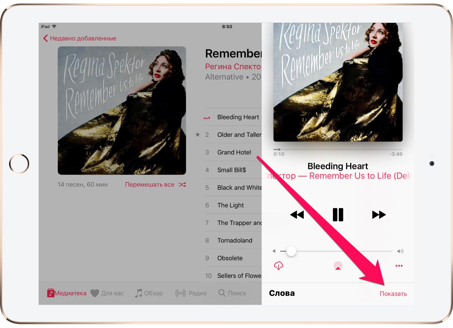 Как открыть текст песни вApple Music