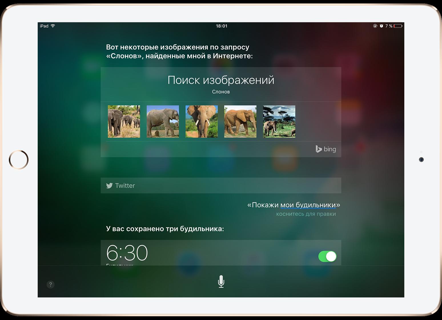 Как открыть историю обращений к Siri