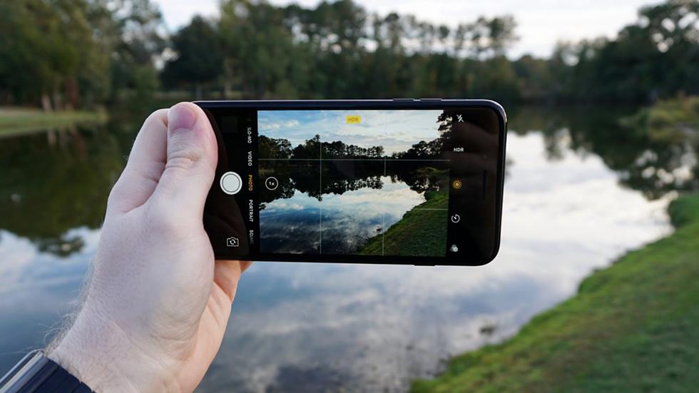 фотографии сделанные с помощью смартфонов раздельнополое растение
